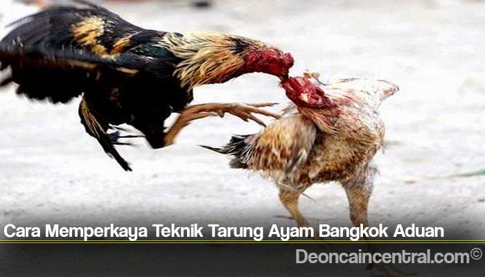 Cara Memperkaya Teknik Tarung Ayam Bangkok Aduan